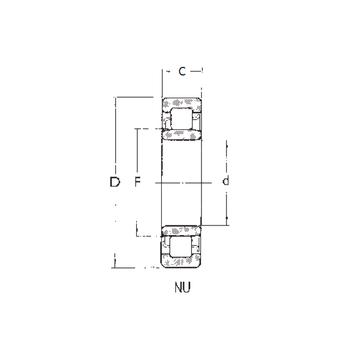 NU305 FBJ Cylindrical Roller Bearings
